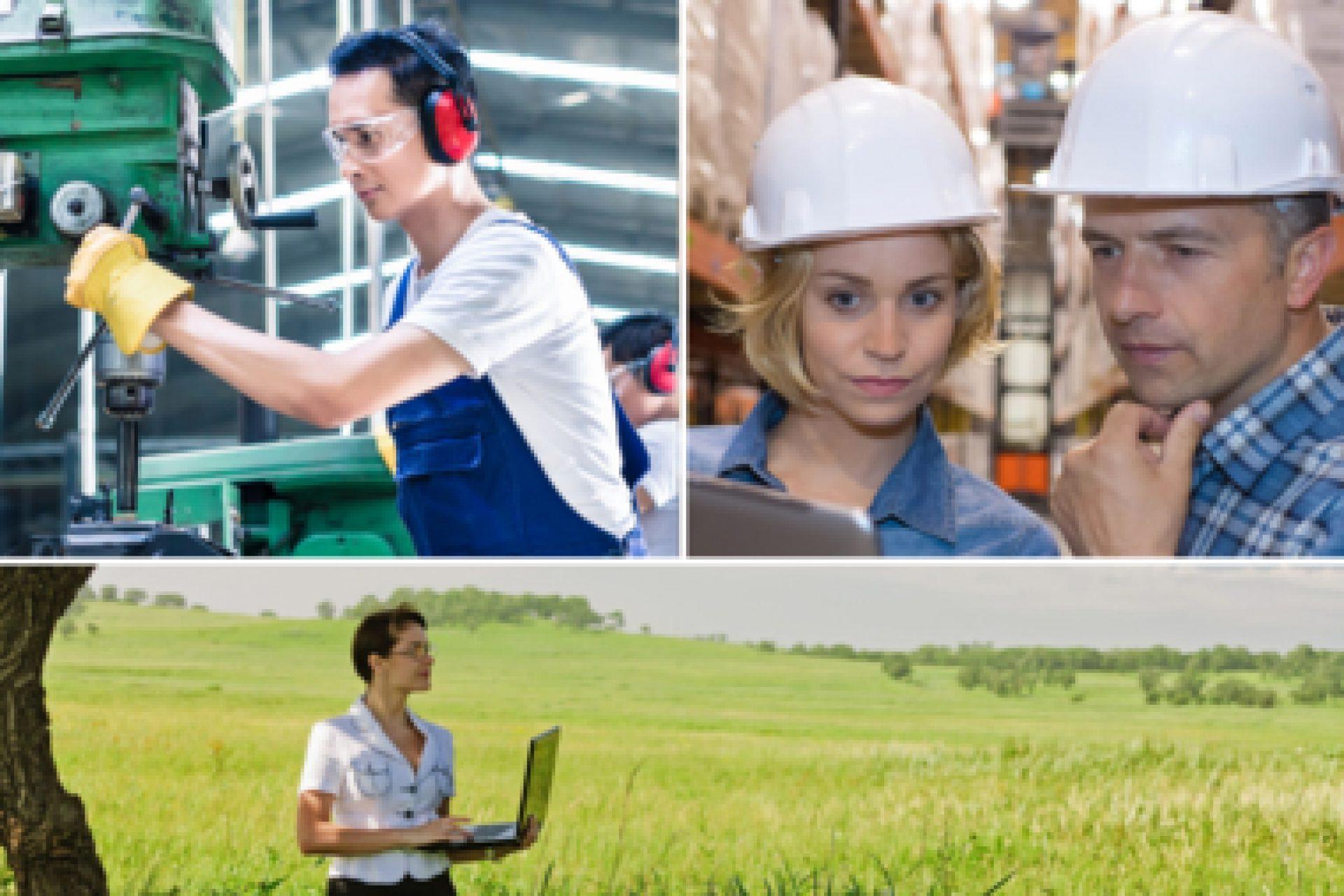 Certification qualité, environnement, sécurité